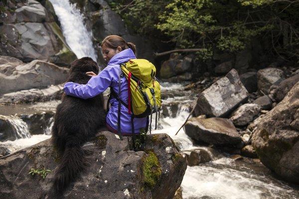 cane nero escursionista su greto di fiume